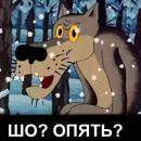 Очередной майдан. Анатолий Вассерман