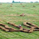 Битва за урожай: «аграрные войска Путина» и египетская подножка Украине