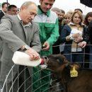 Путин и братья наши меньшие
