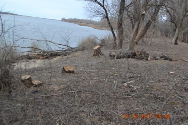 В Астраханском природном парке сфотографировали кучи мусора