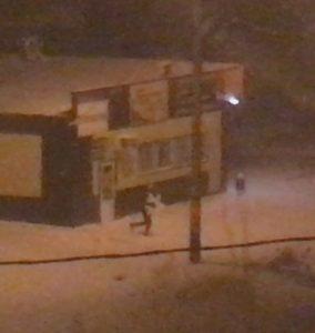 В Астрахани сняли на видео кражу игрушек с муниципальной елки
