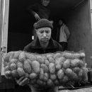 Вырастет ли в Астраханской области цена на картофель