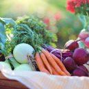 В Астрахани производят экологически чистые продукты