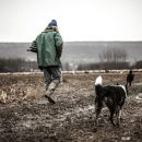 В Астраханской области будут судить пастуха, который распродал все вверенное ему стадо