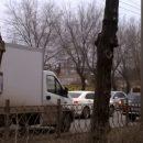 В Астрахани появились плакаты против опиловки деревьев