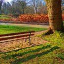 Стало известно, за благоустройство каких парков и скверов проголосовали астраханцы