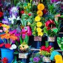 Видео ограбления астраханского цветочного магазина оказалось фейком