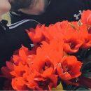 В Калмыкии возмущены нашествием туристов, уничтожающих тюльпаны