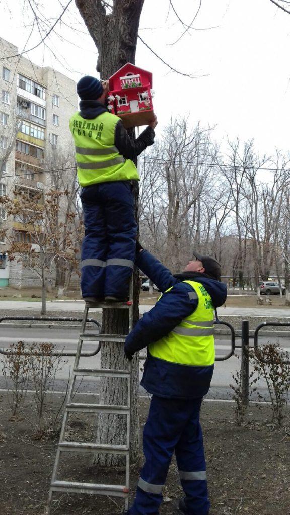 Стало известно что за таинственные мастера украсили парк в Астрахани необычными скворечниками