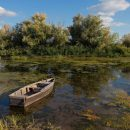 Под Астраханью мужчина утопил приятеля в реке