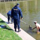 В Астрахани из Лебединого озера спасали собаку и мужчину, нырнувшего за ней