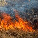 МЧС сообщает о наивысшей пожароопасности в Астрахани