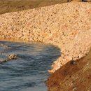 В Астраханской области фермеры незаконно осушили ильмень, чтобы посадить сельхозрастения