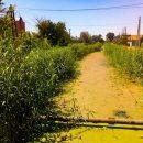 В Астраханской области пересыхают ерики, а люди остаются без воды