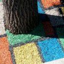 В Астрахани обнаружили земельный участок, поменявший цвет
