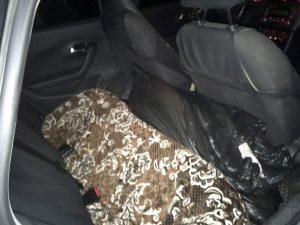 Под Астраханью у нарушившего ПДД таксиста нашли 11 осетров