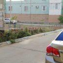 В Астрахани ночью автоледи протаранила забор и припарковалась в кустах