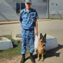 В Астраханской области служебная собака Ренесми помогла найти предполагаемого убийцу