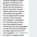 В Астрахани мошенник делает бизнес на пропавших собаках