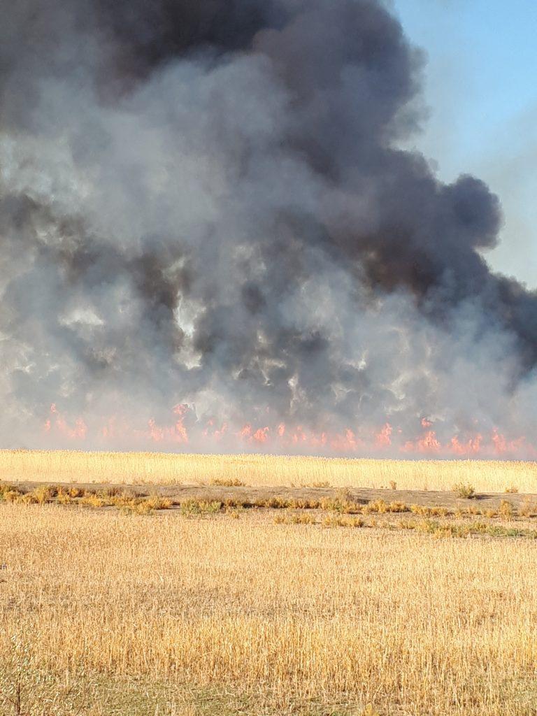 Астраханцы сфотографировали, что так сильно горит в Трусовском районе