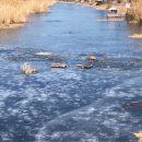 Три человека провалились под лед речной протоки под Астраханью