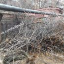 Гаражи в астраханском дворе завалили ветками
