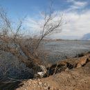 Река размывает берега астраханских сел и подступается к домам