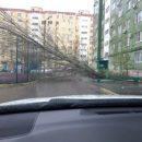 В Астрахани снова деревопад и подмятые машины