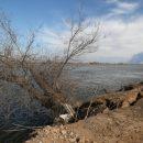 Режим повышенной готовности введен в Астраханской области из-за паводка