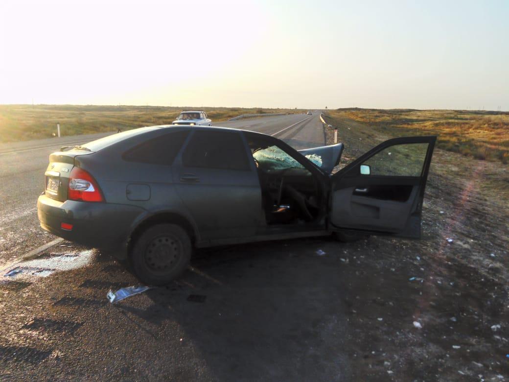 Автобус и легковая машина столкнулись на трассе Тамбов-Волгоград-Астрахань, есть пострадавшие