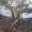 В Астрахани сгорел киоск и автомобиль