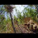 Фильм о российской Амазонке – Волге сняли в удивительном формате