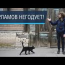 Популярный блогер раскритиковал ужасную архитектуру и развалины в центре Астрахани