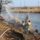 В Астрахани из-за двух поджигателей камыша чуть не загорелись жилые дома