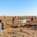 Астраханская область приняла финальный этап всероссийской акции «Сохраним лес»